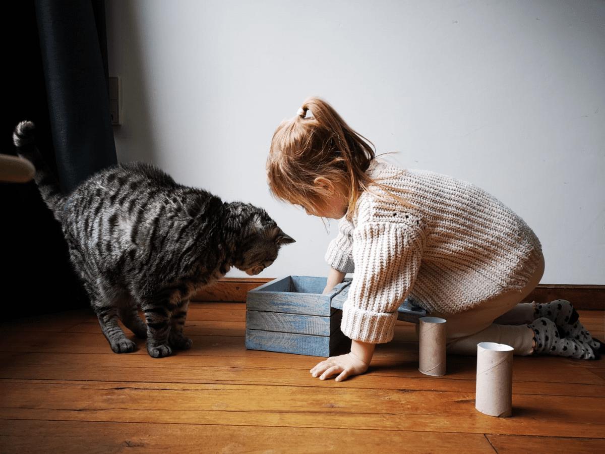 kind en kat
